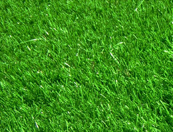 piscine p 1g du beau gazon synth tique et la belle pelouse artificielle de jardin balcon. Black Bedroom Furniture Sets. Home Design Ideas