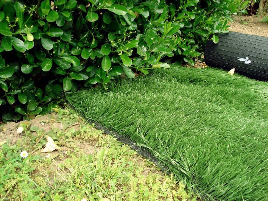 photos 51 du gazon synth tique la belle pelouse. Black Bedroom Furniture Sets. Home Design Ideas